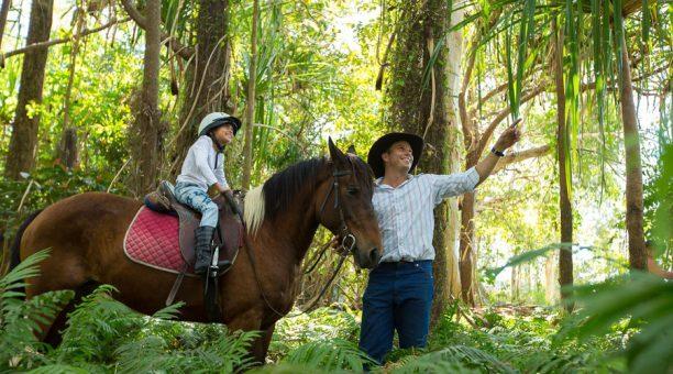 Riding through the rainforest