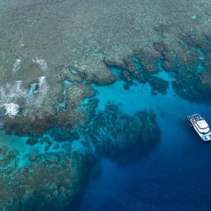 Great Barrier Reef Tours, Reef Experience